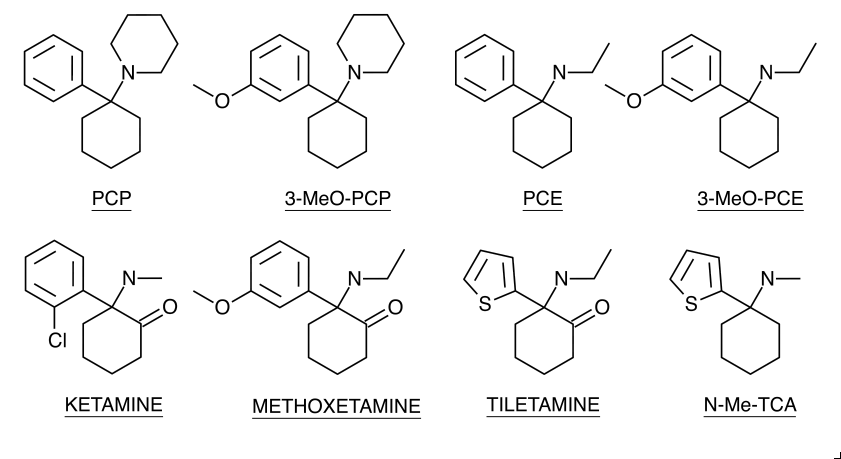 Other Arylcyclohexylamine Structures.png