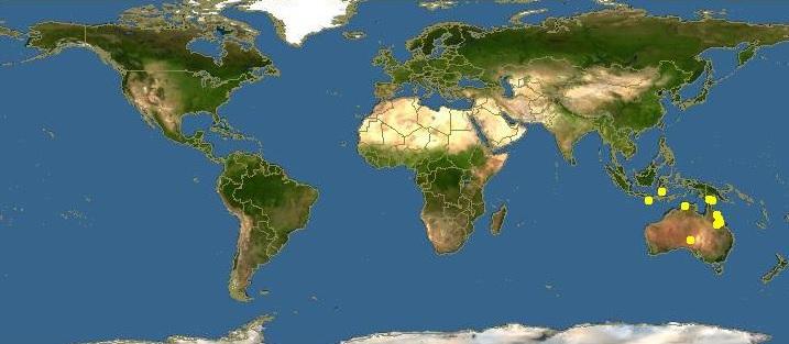 Torres Strait Islands Wiki The Torres Strait Islands